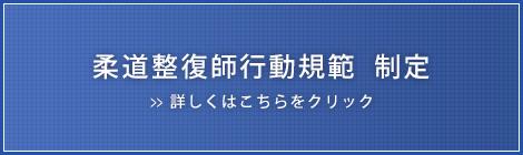 柔道整復師行動規範 制定